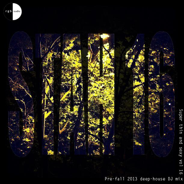 STAH vol 16 cover